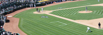 プラザアウトフィールド (Plaza Outfield)