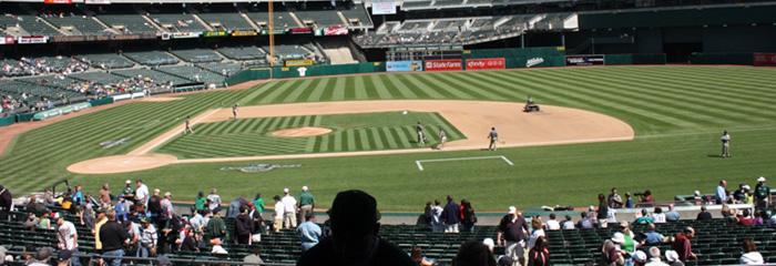 fieldinfield_view